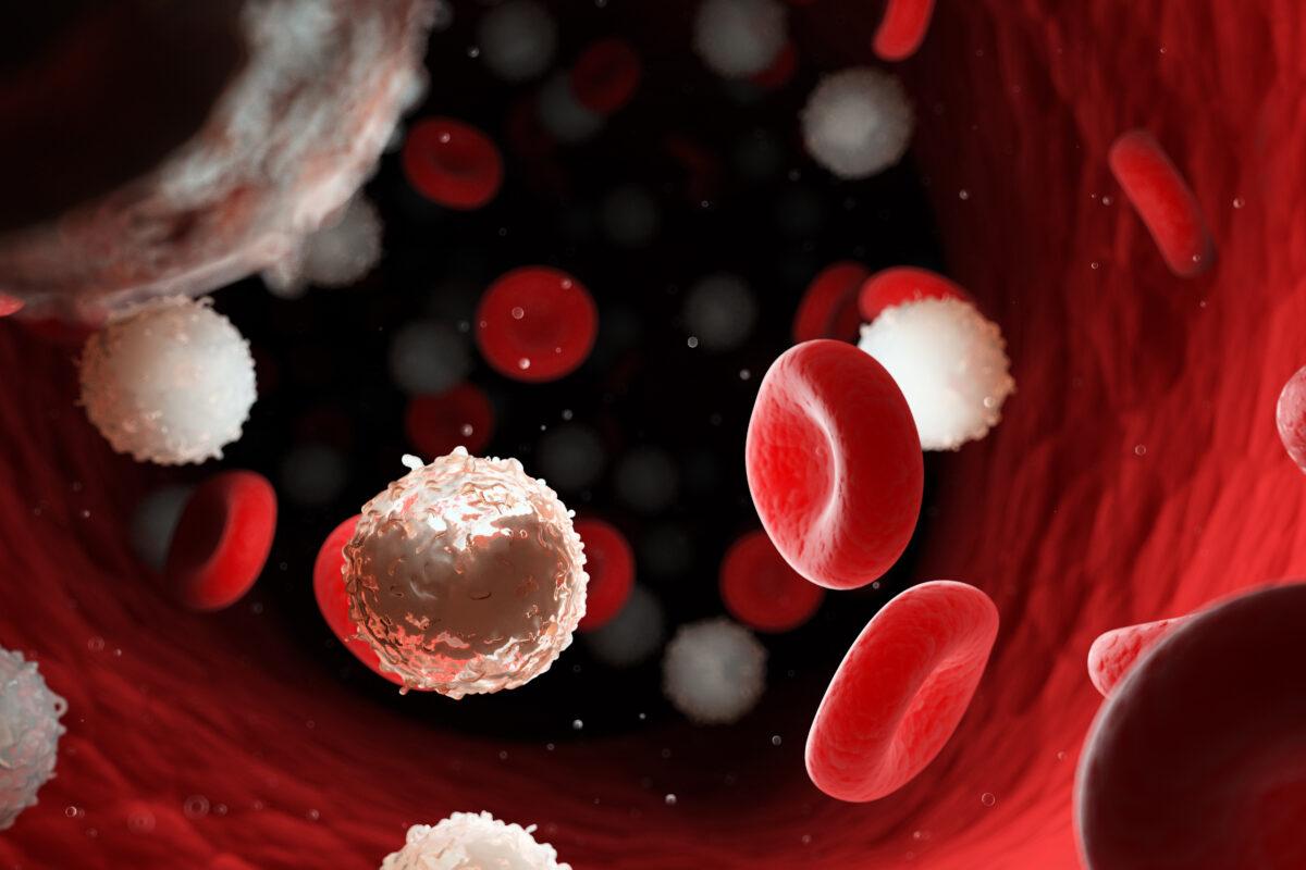 Hematolog w CMD